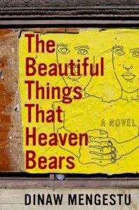 The Beautiful Things That Heaven Bears by Dinaw Mengestu. NY: Riverhead Books, 2007