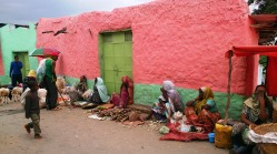Vendedoras de caña, Harar. Foto: eaTropía
