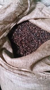Café tostado, Harar. Foto: eaTropía