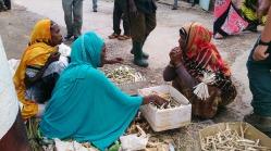 Vendedoras de palitos para limpiarse los dientes (mafakiya), Harar. Foto: eaTropía